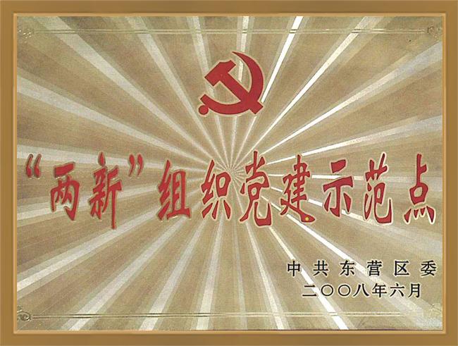 """""""两新""""组织党建示范点"""